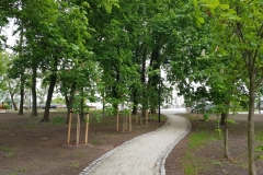 obrowo_park_002