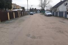 3przed_Modrzew